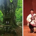 森のスピリチュアル・ヒーリングアートパステル・水彩画展(7/29~8/8)オープニングイベント